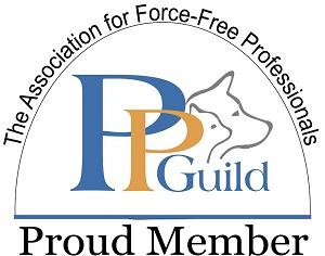 PP-Guild